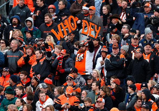 Cincinnati Bengals at Paul Brown Stadium. Photo by The Enquirer/Gary Landers.