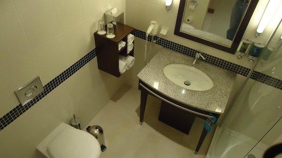 Hampton by Hilton Berlin City West: Shower room