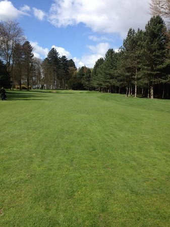Forest Pines Hotel & Golf Resort - A QHotel: 5th pines