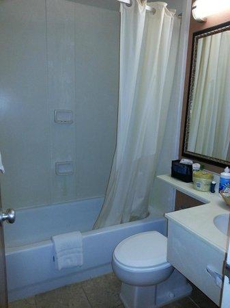 American Inn of Bethesda: Small bathroom. Hit my elbow a few time.