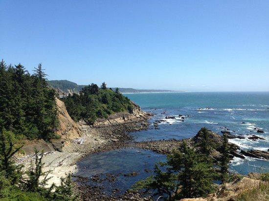 Cape Arago State Park: Gorgeous Oregon