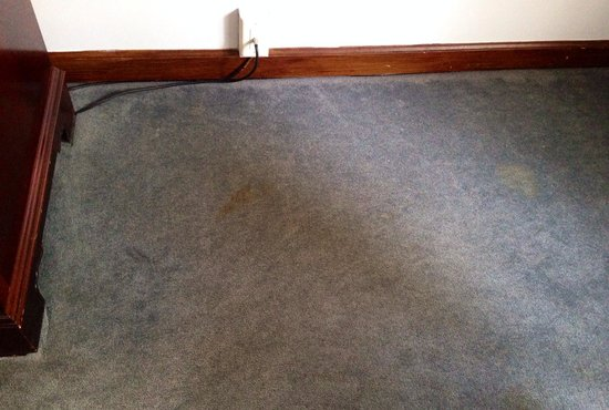 """Avon Old Farms Hotel: Stained carpet in our """"renovated room"""""""