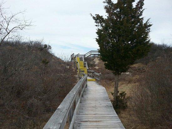 Parker River National Wildlife Refuge : Hellcat Wildlife Observation Area Parking number 4