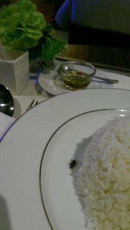 Sofitel Bangkok Sukhumvit : room service with an insect inside