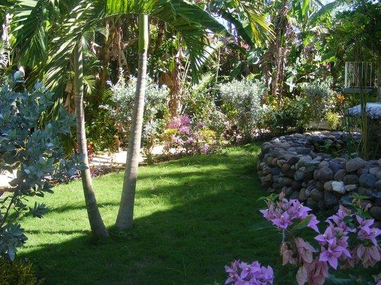 Seastar Inn: Garden area