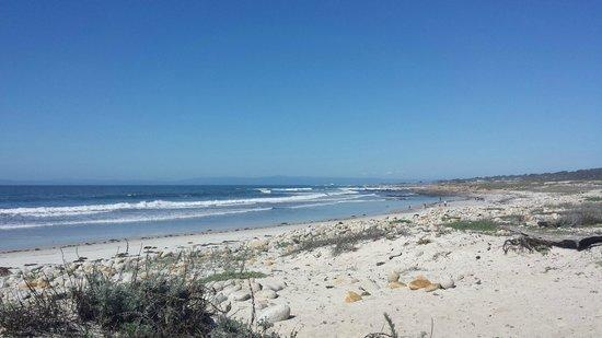 Seventeen Mile Drive: Pebble Beach