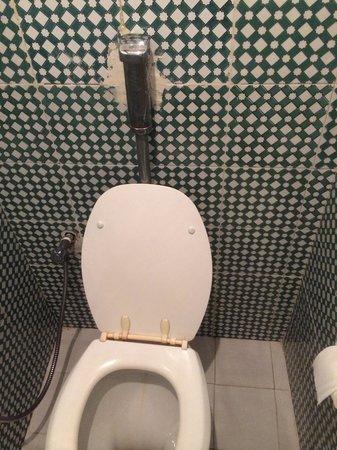 Tej Marhaba Hotel: Toilet !