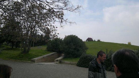 Vergina, Grèce : ψάξτε τον καταπληκτικό ξεναγό...αξίζει να τον ακούσει όποιος πάει εκεί