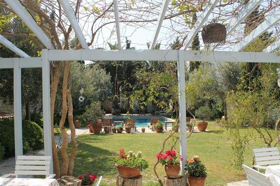 Alacati Tas Otel: Breakfast patio and lawn