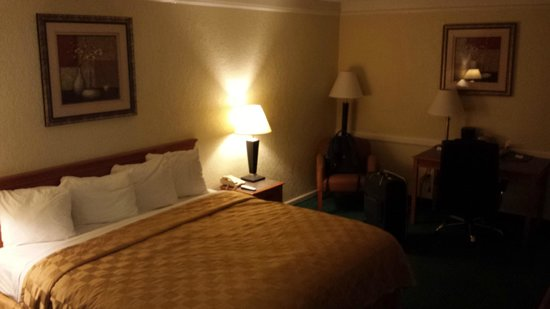 Regency Inn: Kind of dark because it was at night. Very comfy room! That bed sleeps like a champ!