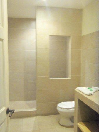 Hotel Luisiana: baño