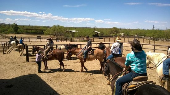 Tanque Verde Ranch: ready to ride