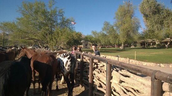 Tanque Verde Ranch: main corral across from dining hall