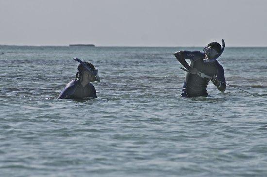 Paradise Cove Beach Resort: Spear fishing