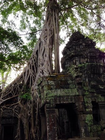 The Angkor temples are amazing. Our Amansara Siem Reap guide took us to a number of ruins not in