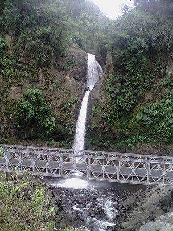 La Paz Waterfall Gardens: catarata La Paz , sobre la ruta