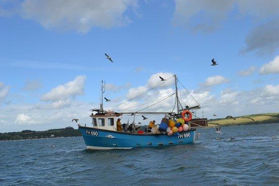 Falmouth Boat Hire: Fishing boat
