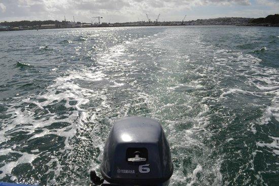 Falmouth Boat Hire: Boat's wake