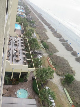 Compass Cove Oceanfront Resort: Looking north from 8th floor