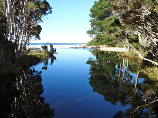 Sisters Beach, Australia: Walk to the mouth of Sisters Creek while staying at Eagles Rise Tasmania