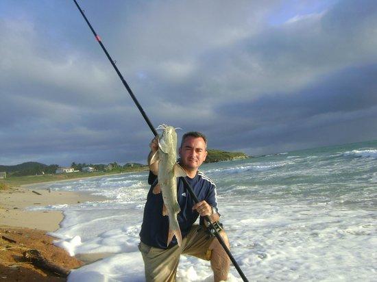 Casa Trudel : Surf Fishing Playa el Humo