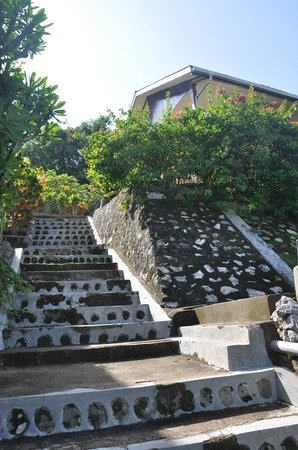 Golo Hilltop Hotel & Restaurant: stairs to hotel and a variety of levels of stairs to different