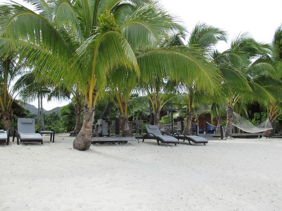 Magic Reef Bungalows: The beach