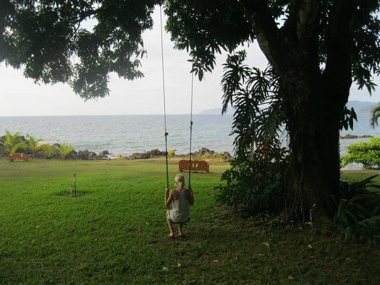 Drake Bay Wilderness Resort: Swinging