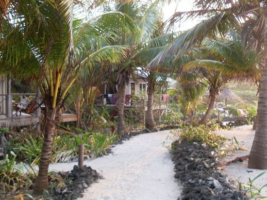 Off The Wall Dive Center & Resort: pathway