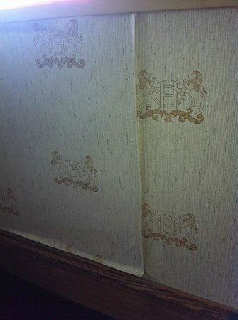 The Congress Plaza Hotel and Convention Center: Peeling wall paper