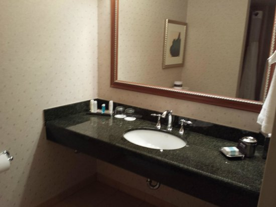 Omni Atlanta Hotel at CNN Center: Bathroom