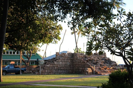 BEST WESTERN Pioneer Inn: The old wall next to the Banyan tree