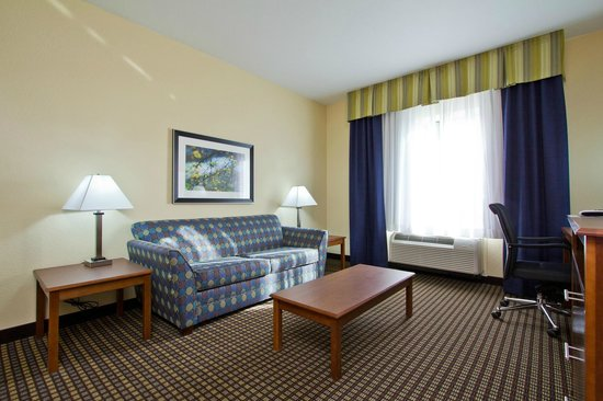 Holiday Inn Express Hotel & Suites Denver East-Peoria Street: Queen Sized Sleeper Sofa