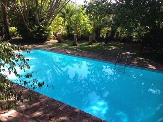 Hacienda Siesta Alegre: A beautiful setting for a pool.