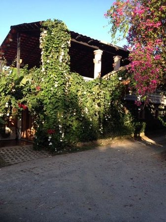 Hacienda Siesta Alegre: the entrance to the Tree House is at bottom left in this photo.