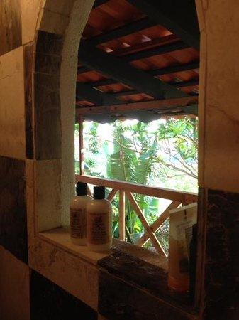 Hacienda Siesta Alegre: Window in the shower of Tree House
