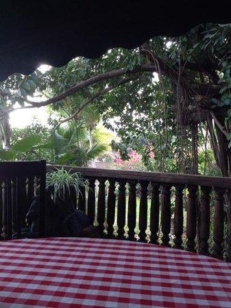 Hacienda Siesta Alegre: breakfast view