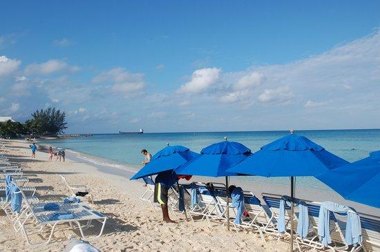 Comfort Suites Seven Mile Beach: beach section