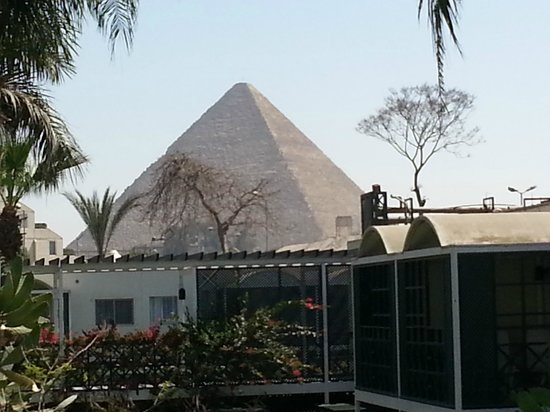 Mercure Cairo Le Sphinx: View from my room! LOVE IT!