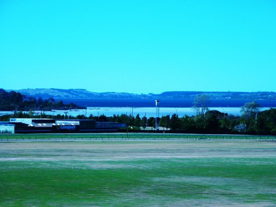 Rydges Rotorua: View from our room