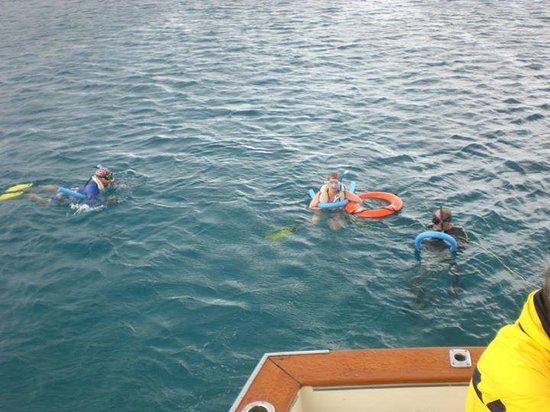 Aqua Marine Dive Center: snorkeling