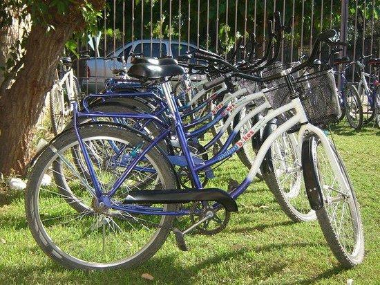 Maipu Bikes: Bicicletas de paseo