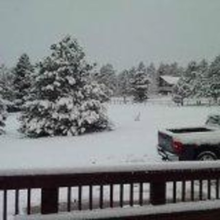Discovery Lodge : This is the view from the front door on a snowy morning