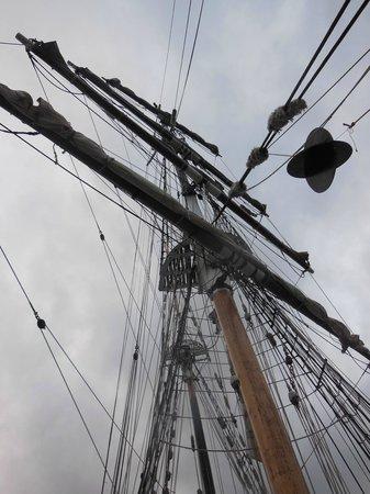 Sydney Harbour: Soren Larsen's mast