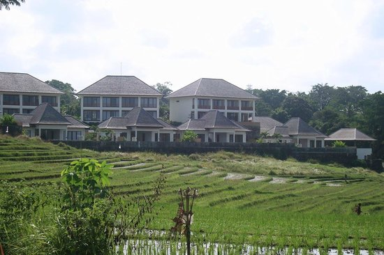 Sahaja Sawah Resort : resort