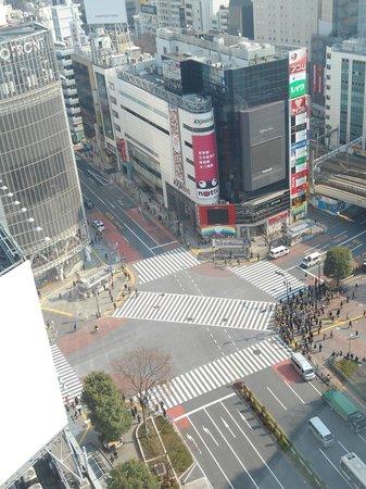Shibuya Excel Hotel Tokyu : Shibuya