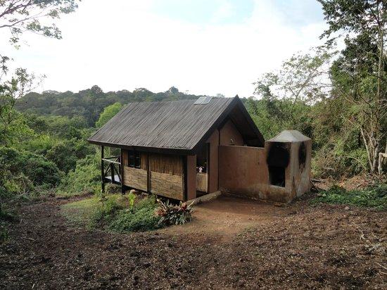Chimps' Nest: private hut
