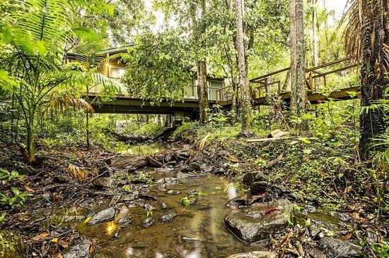 Running Waters Cabin, Treetops Montville