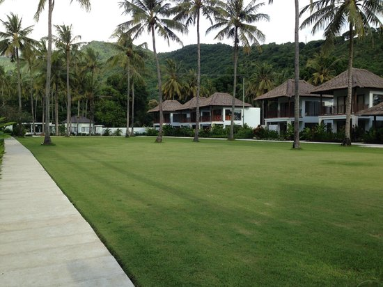 Living Asia Resort and Spa Lombok : green grass