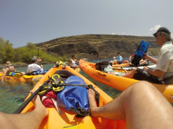 Hawaii Pack and Paddle Day Tours: The group of kayaks all tied up ready for snorkeling
